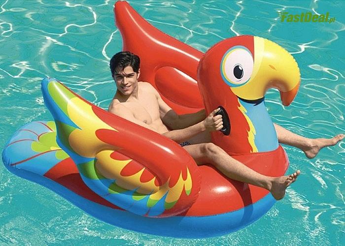 Materac do pływania papuga