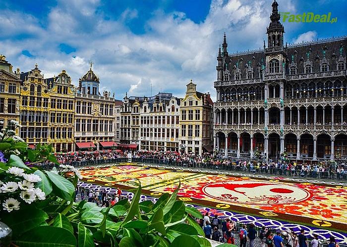 Kwiatowy dywan w Brukseli