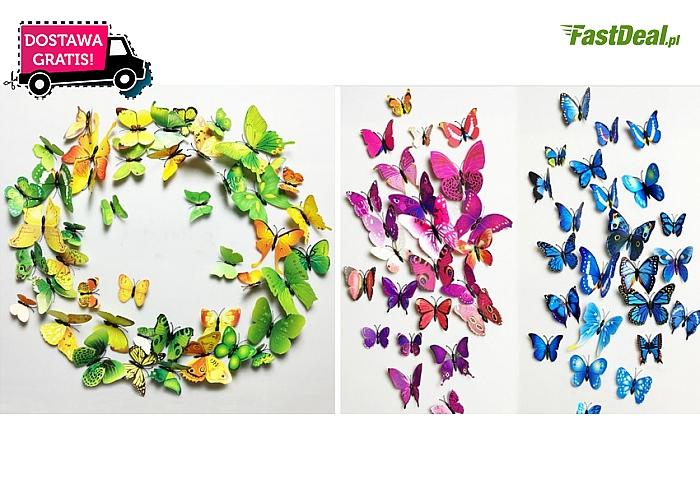 Motylki