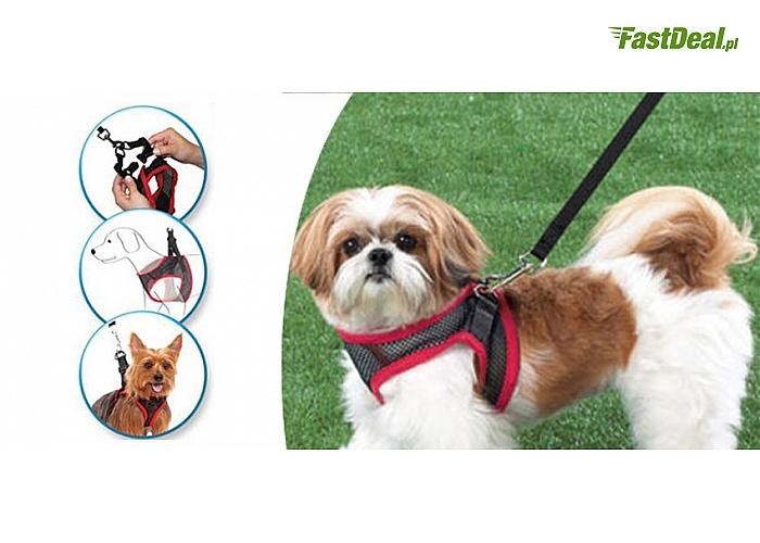 Zadbaj o bezpieczeństwo pupila! Szelki dla psa + smycz gratis!