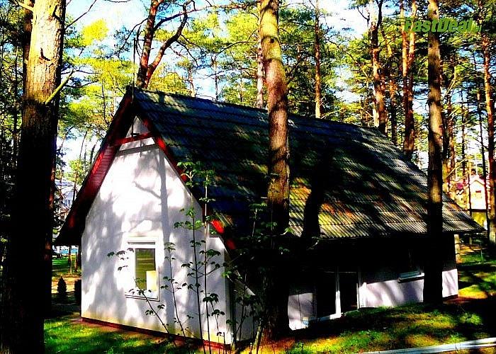 Leśna Oaza w Pogorzelicy! Domek 6-osobowy! Komfortowe pokoje! Kuchnia! Parking!