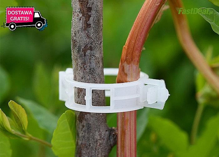 Klipsy do spinania roślin! Bardzo estetyczne, praktyczne oraz proste w użyciu!