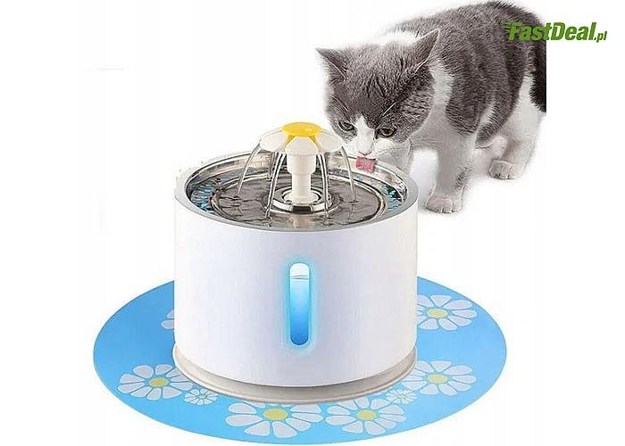 Automatyczna fontanna dla kota zapewni odpowiednią ilość wody Twojemu pupilowi