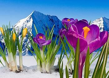 Wiosenne Tatry